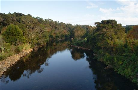 Kerikeri River.