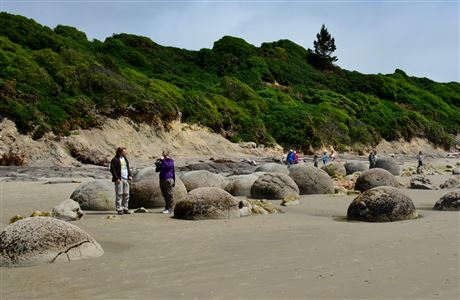 People at Moeraki Boulders.