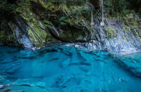Blue Pools in Makarora River.