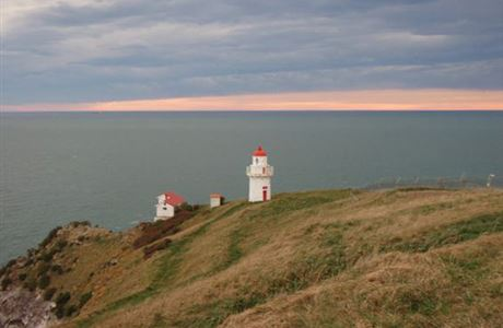 Lighthouse at Taiaroa Head/Pukekura.