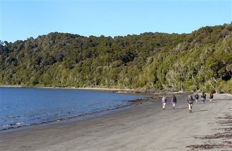 Trampers on the Rakiura Track walk along Magnetic Beach below the campsite at Port William.
