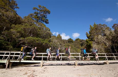 Trampers walking across bridge, Rakiura Track.