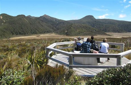 Viewing platform on Ahukawakawa Track.
