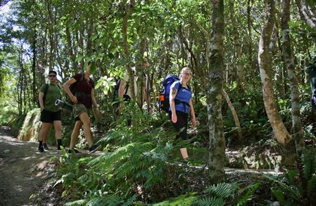 Trampers on Orongorongo Track.