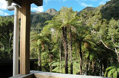 View from the deck at Papatahi Hut.