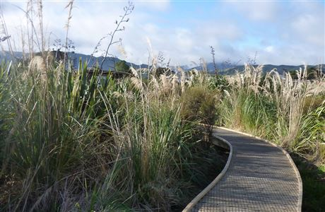 Boardwalk at Waikanae Estuary.