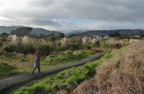 Pathway through the Waikanae Estuary.