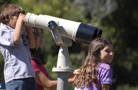 Looking at wildlife through binoculars