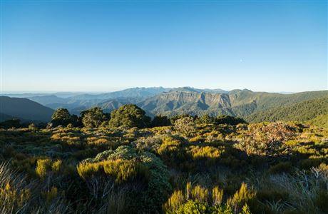 Quelle: https://www.doc.govt.nz/thumbs/gallery/globalassets/images/places/west-coast/paparoa-national-park/paparoa-track/paparoa-track-view-1200.jpg