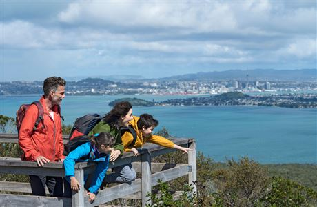 Panoramic views from the summit of Rangitoto Island.