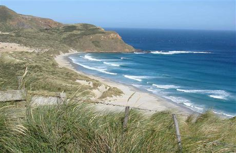 Coastal Otago Events and Activities newsletter