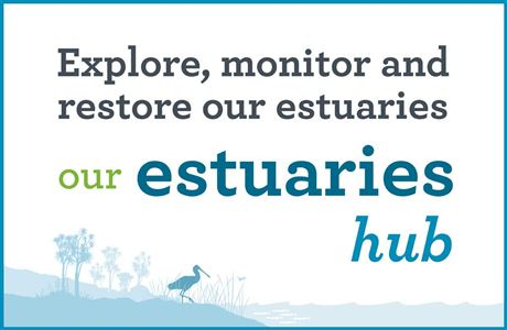 Our estuaries