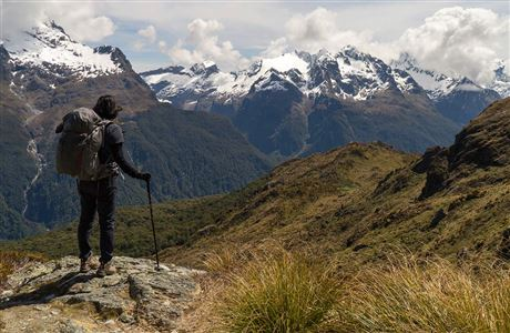 Behind the Scenes: Conservation in Fiordland