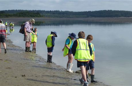 Protecting our estuaries