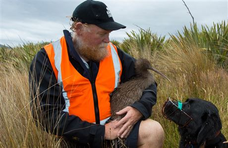 Interviews about New Zealand birds