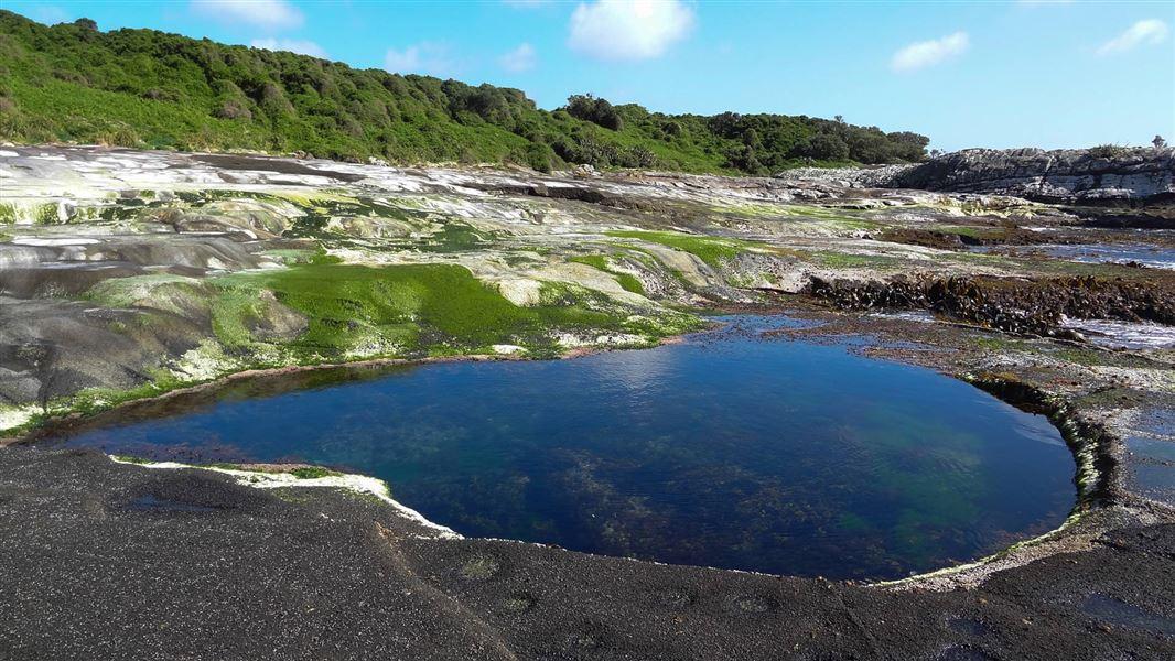 Картинки по запросу island Chatham фото