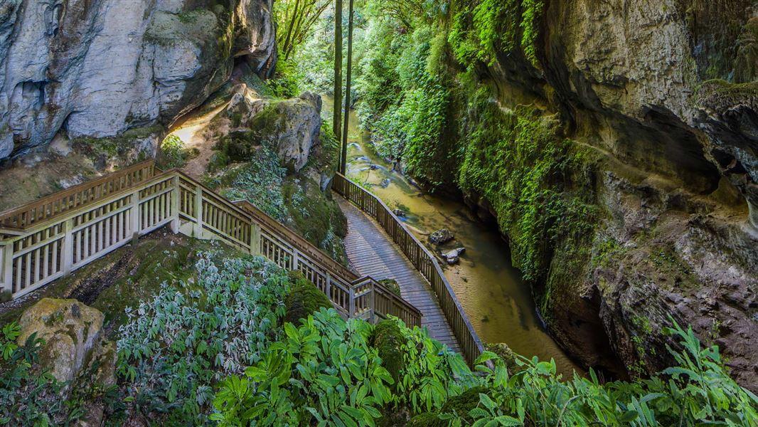 Resultado de imagen de Mangapohue Natural Bridge