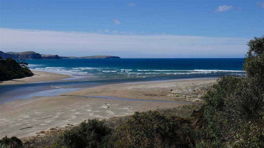 Public feedback sought on marine protection for south eastern South Island
