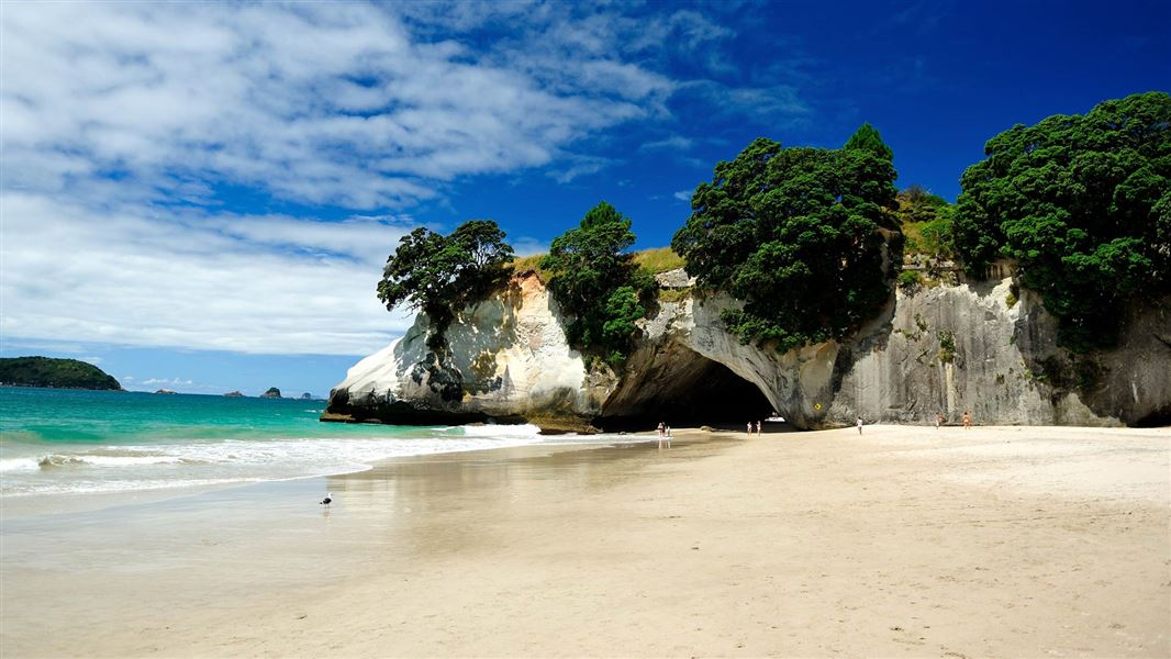 Image result for cathedral cove new zealand