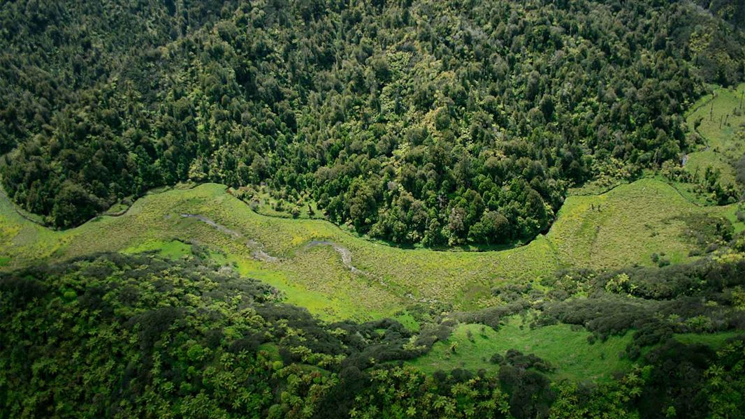 Community conservation fund grant a building block for runanga