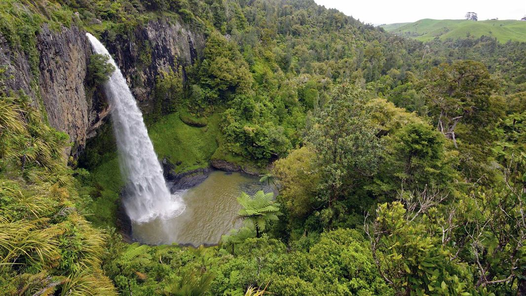 Wairēinga/Bridal Veil Falls closed for goat control