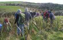 Community conservation groups