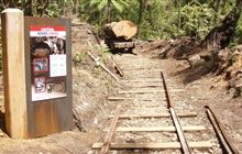 Waitawheta Tramway: Kaimai Mamaku Conservation Park, Bay of Plenty region