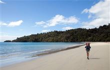 Rakiura National Park: Places to go in Southland