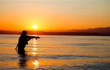 Taupo Trout Fishery: Places to go in the Central North Island