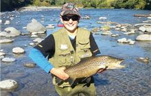 Buy a Taupo fishing licence online