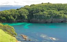Cape Rodney-Okakari Point Marine Reserve (Goat Island or Leigh): Places to go in Auckland
