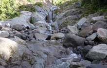 Dawson Falls walking tracks: Walking and tramping in Egmont National Park, Taranaki region